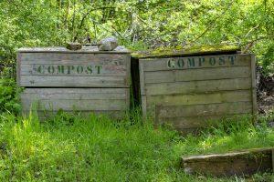 compost-vegetaux
